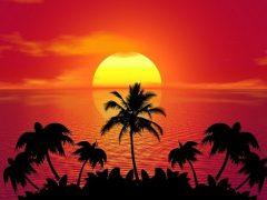 Заявление на отпуск за свой счёт: причины и сопутствующая документация