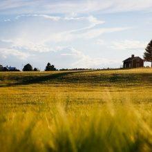 Ипотека на покупку земельного участка: правила оформления