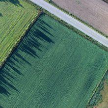 Обременение на земельный участок: как правильно распоряжаться
