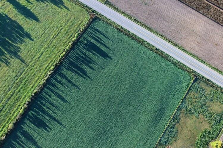 Обременение земельного участка