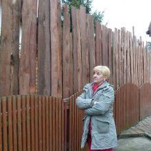 Кто должен ставить забор между соседями